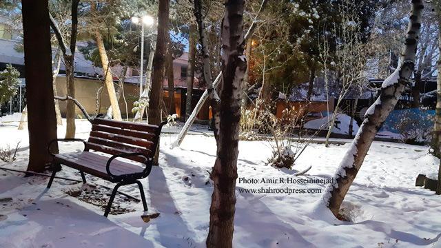 تصویر: جلوه هایی از برف شاهرود