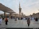 ✅ عکس : حاجیان استان سمنان بامداد امروز در مسجد النبی
