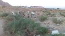 📷 تصویر : صحرای جلالی شاهرود آشغالدانی سودجویان